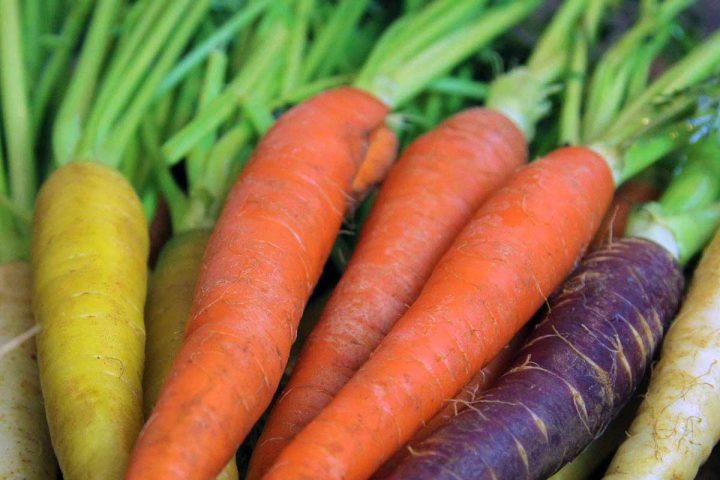 Moroccan Tri-Colored Carrot Salad